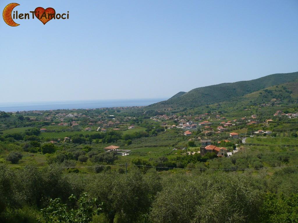 Alano di Castellabate
